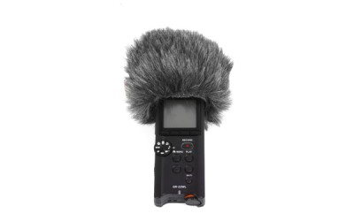 Tascam Mini WindjammerDR-22 WL (055464)